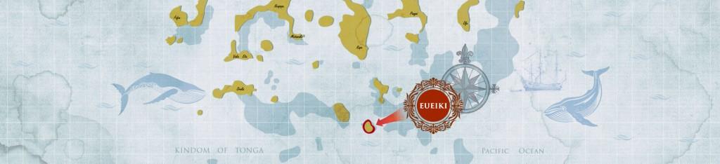 banner EUEIKI